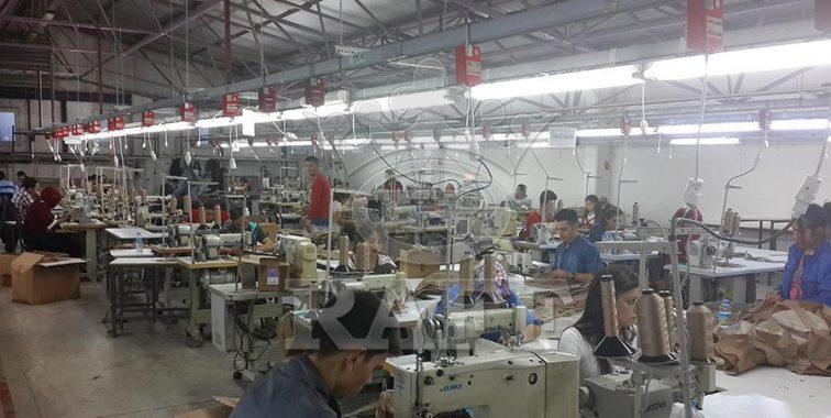 raff fabrika 5 1